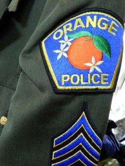 画像2: カリフォルニア州オレンジ市警察ドレスジャケット 日本人XL