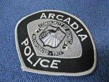 アーケディア市警察ショルダーパッチ